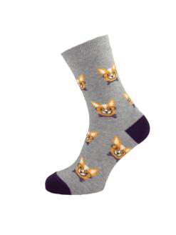дамски чорап чихуахуа лила