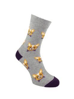 дамски чорапи чихуахуа лила