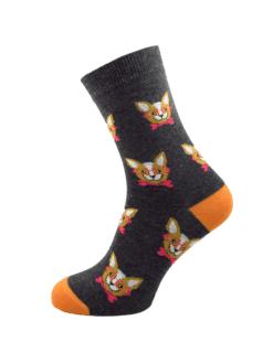 дамски чихуахуа чорап