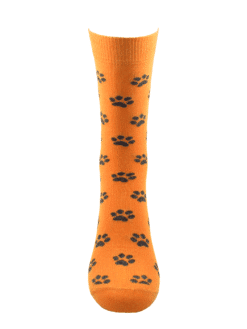 дамски чорапи кучешка лапичка