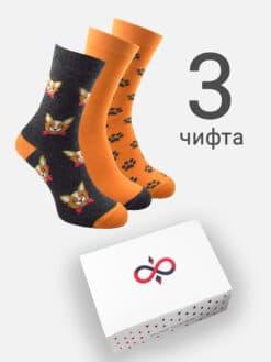 чорапи в кутия с кученца